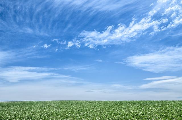 blue-sky-1348634_640